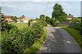 SJ6541 : Chapel Lane in Cox Bank, Cheshire by Roger  Kidd