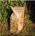 SO1636 : Old Milestone by Milestone Society