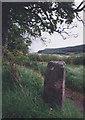 NH6453 : Old Milestone in Munlochy by Milestone Society