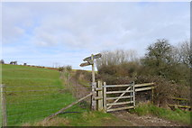 ST8412 : Finger post pointing up to Hambledon Hill by Tim Heaton