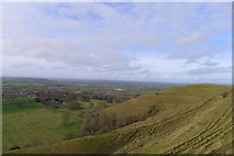 ST8412 : The north-west slopes of Hambledon Hill by Tim Heaton