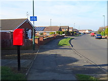 NZ6022 : Mapleton Crescent, Redcar by JThomas