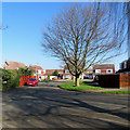 TL4856 : Cherry Hinton: Daws Close by John Sutton