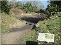 SU6462 : The entrance to the amphitheatre at Calleva Atrebatum by Peter S