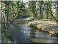 SJ7567 : Bend in the river Dane by Stephen Craven
