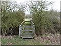 SO9562 : Footbridge on Mere Hall estate by Jeff Gogarty
