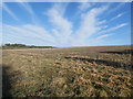 TL7899 : Looking north west across arable field by David Pashley