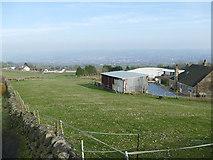 SJ8657 : Field at Daisy Bank Farm by Stephen Craven