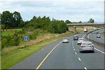 S7170 : M9 Motorway, northbound near Ballybannon by David Dixon
