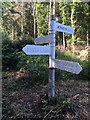 ST1236 : SCC fingerpost at Leigh Lane junction, Crowcombe by Marika Reinholds