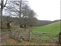 ST1537 : Gate and stile, edge of West Hill by David Smith