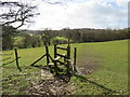 TQ4659 : Stile near Knockholt by Malc McDonald