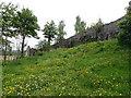 SJ0566 : The Town Walls of Denbigh by Eirian Evans