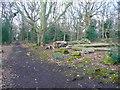 SE2539 : Track across Ireland Wood, Cookridge by Humphrey Bolton