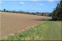 SU6017 : Looking back towards Droxford from permissive path on field edge by David Martin