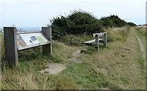 NZ6821 : Site of Huntcliff Roman Signal Station by Mat Fascione
