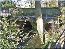 ST8026 : Town Bridge by Michael Dibb