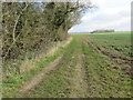 TF1484 : Field-edge Track and Bridleway designated as a Public Byway by Peter Wood
