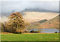 NY1606 : Field on north side of Wastwater by Trevor Littlewood