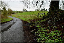 H6058 : Muddy along Tullylinton Road by Kenneth  Allen