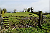 H6058 : Muddy entrance to field, Tullylinton by Kenneth  Allen