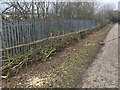 SK4540 : Newly laid hedge by David Lally