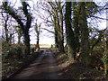 TM2769 : Dennington Road & Bridge by Adrian Cable
