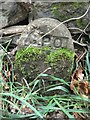 SH6266 : GPO cable marker on bank of Afon Ogwen, Bethesda by Meirion