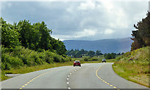 S4307 : N25 West of Carroll's Cross Roads, County Waterford by David Dixon