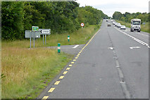 S3402 : Eastbound N25, Carriglea by David Dixon