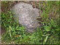 SJ8775 : Old Boundary Marker by Milestone Society