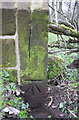 NY6823 : Benchmark at NE end of NW parapet of Stock Bridge by Roger Templeman