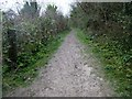 TQ1306 : Bridleway to Mount Carvey (2) by Peter Holmes