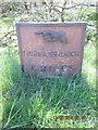 NR9472 : Old Milepost by the B8000. Kilfinan parish by Milestone Society