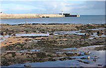 NO5603 : Anstruther Harbour by Richard Sutcliffe