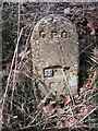 SH6070 : GPO cable marker, Tal-y-bont by Meirion