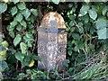 NY5323 : Old Milepost by CF Smith