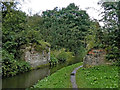 SJ9851 : Bridge remnants south-east of Cheddleton in Staffordshire by Roger  Kidd