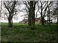 TA0264 : Through  trees  to  Creyke  Farm by Martin Dawes
