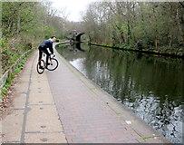 TQ2783 : Cycling on the Towpath by Nigel Mykura