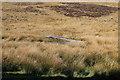 NX1066 : Arrowhead on Braid Fell by Billy McCrorie
