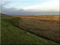 SD7148 : Easington Fell (grouse butts) by Carroll Pierce
