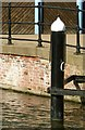 SK5739 : No gondolas here by Alan Murray-Rust