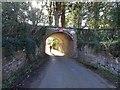 SO7799 : Entering Badger by Gordon Griffiths