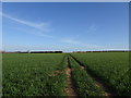 SO7798 : Field Path View by Gordon Griffiths