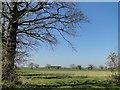 TG3520 : Scene across the arable fields off Water Lane by Adrian S Pye