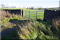 SE0353 : Field gateway off south side of A59 by Roger Templeman