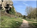 SK5374 : Creswell Crags by Andrew Abbott