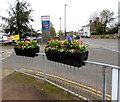 SO6303 : Flower tubs on High Street railings, Lydney by Jaggery