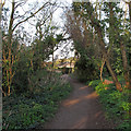 TQ6094 : Public Footpath leading to Hall Road, Shenfield by Roger Jones